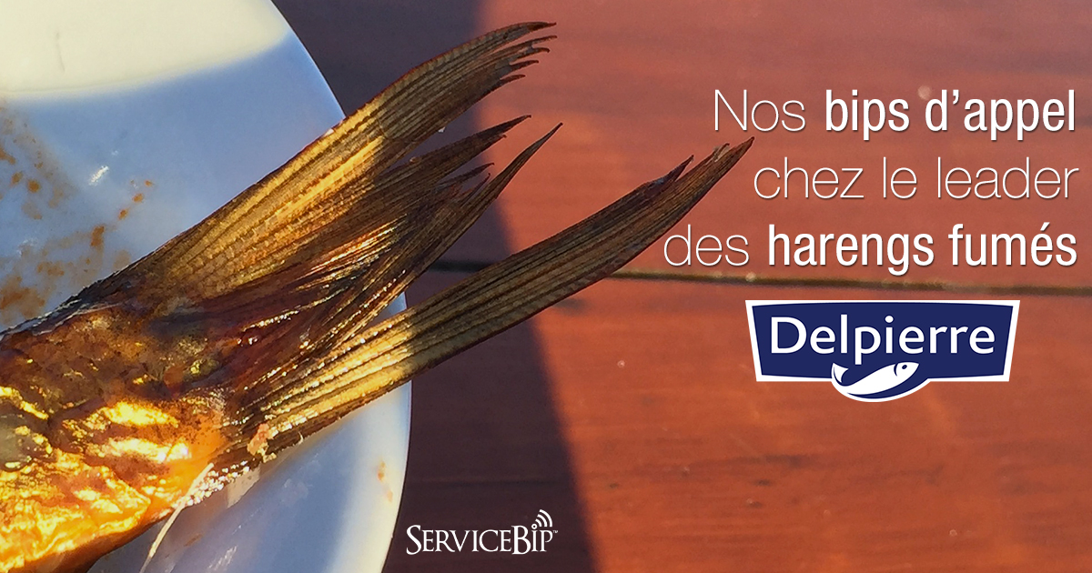 Bips pour magasiniers ServiceBip