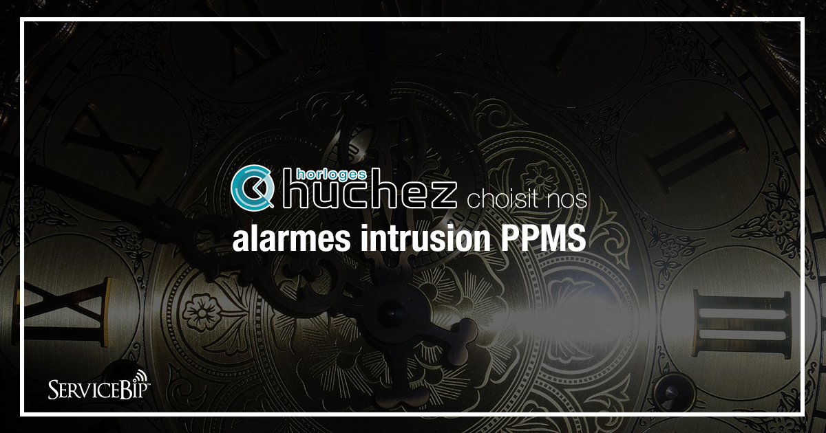 alarmes intrusion PPMS ServiceBip
