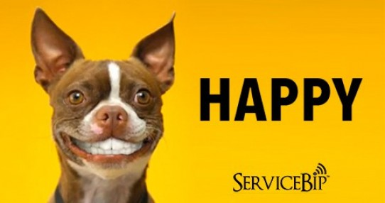 Nos boutons d'appel au service des animaux